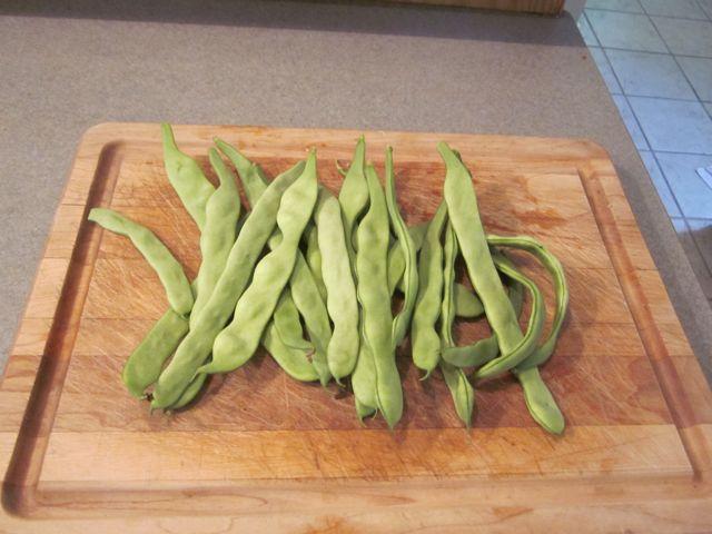 Smerelda Pole Beans